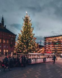 Copenhagen, Denmark by IG:@visitcopenhagen